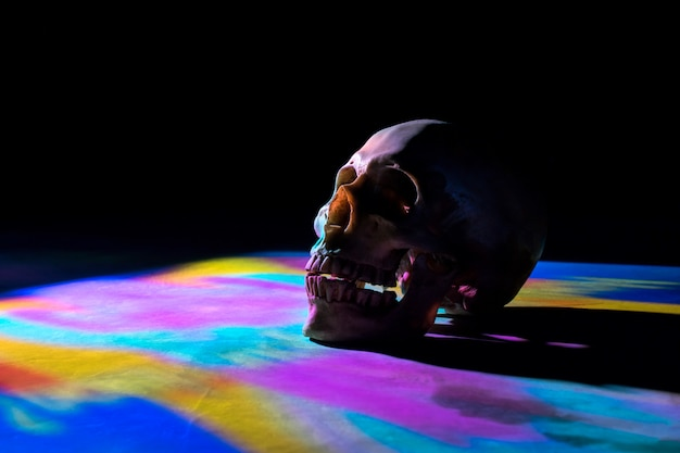 Skull with colorful lighting on black background. Premium Photo