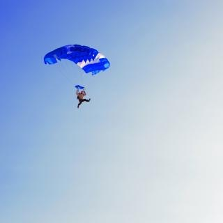 Skydiver  diving Free Photo