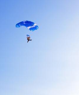 Skydiver  falling Free Photo