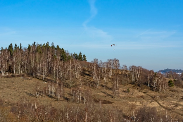 Skydiver in the sky above the trees growing on the mountainside in early spring Premium Photo