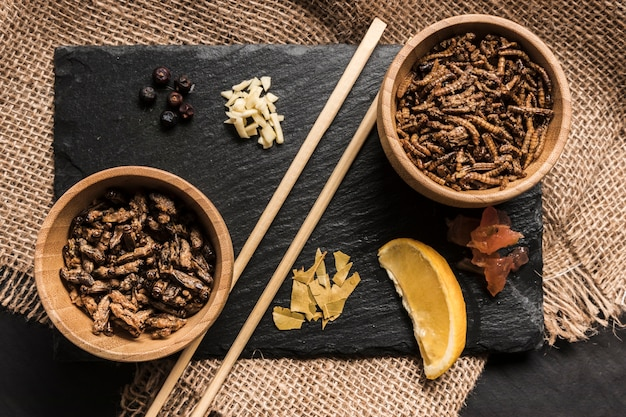 Slate board with insects and spices Free Photo