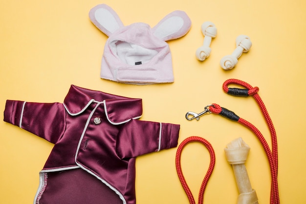 Sleeping costume for dog with snacks and leash Free Photo