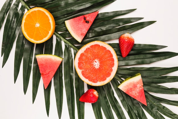 Sliced bright juicy watermelon strawberry orange and grapefruit at palm leaf Free Photo