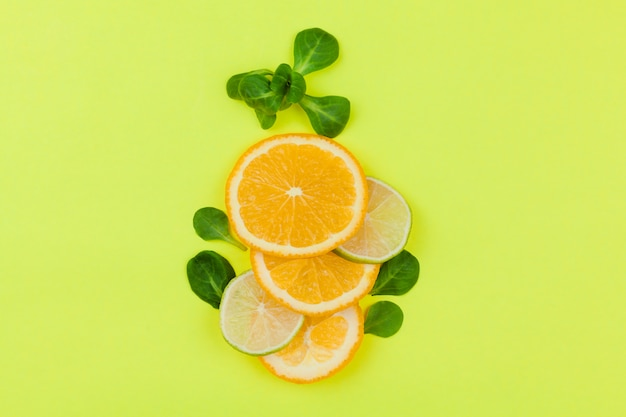 Sliced citrus fruits with leaves on light green background Free Photo