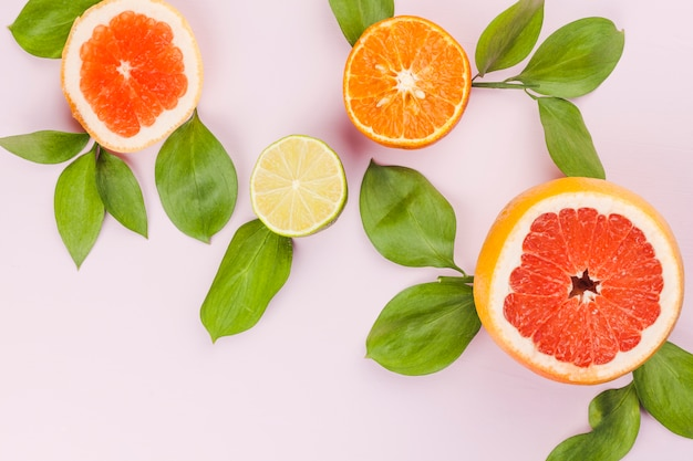 Slices of fresh exotic fruits and green foliage Free Photo