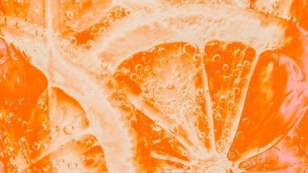 Slices of freshly cut orange Free Photo