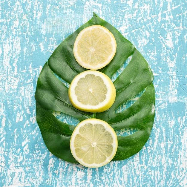 Ломтики лимона на листе монстера Бесплатные Фотографии