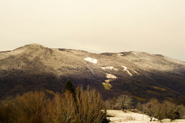 Slovenian mountains covered by snow Premium Photo
