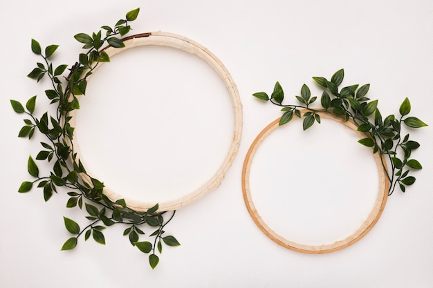 Small and big wooden circular frame with green leaves on white backdrop Free Photo