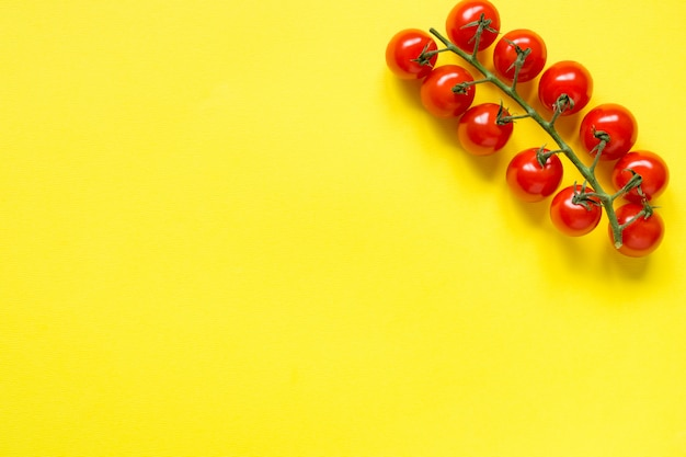 Small cherry tomatoes on a branch on a yellow bright background copy space for text Premium Photo