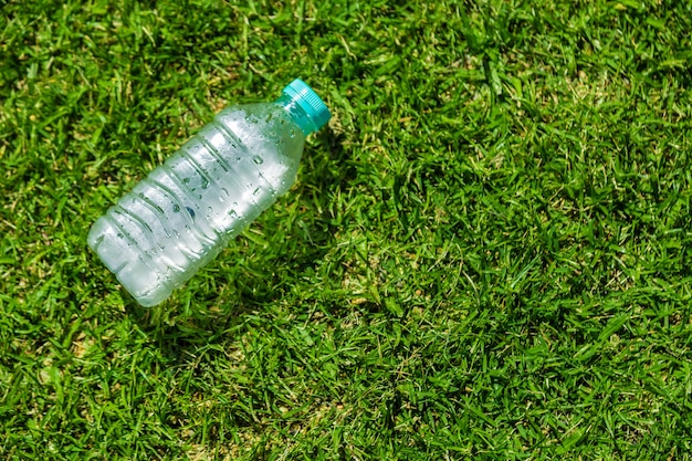 Small cold water bottle laying on green grassy field on a hot sunny day Premium Photo