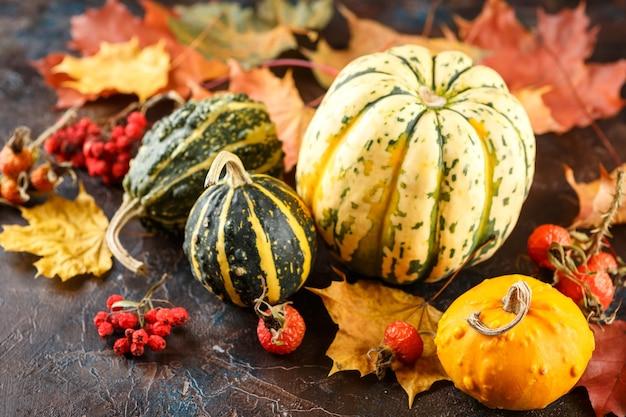 Маленькие декоративные тыквы и осенние кленовые листья на коричневом Premium Фотографии
