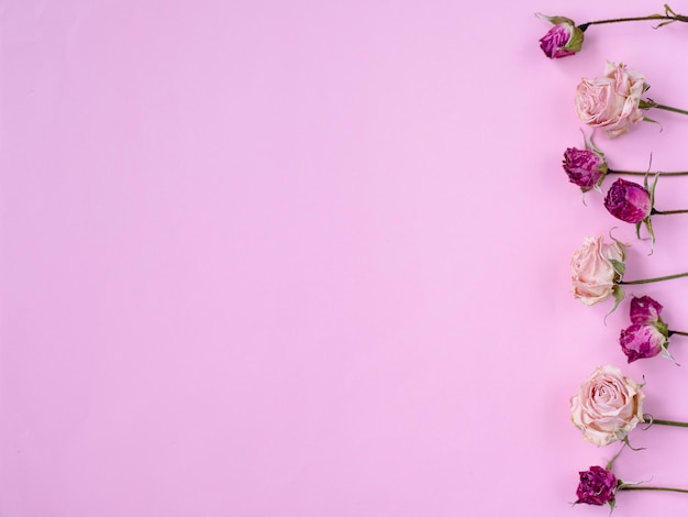 Small dry roses on pastel pink background Premium Photo