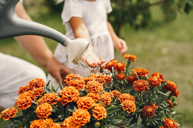 Small girl with senior grandmother gardening in the backyard garden. child in a white hat. Free Photo