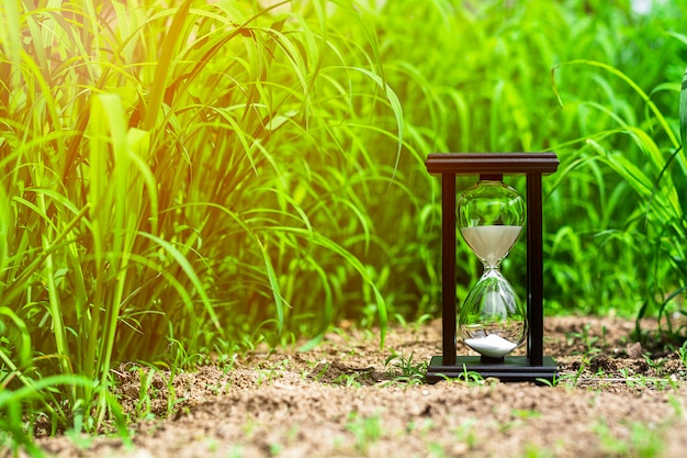 Small hourglass in green grass field. - measuring the passing time and countdown to a deadline. Premium Photo