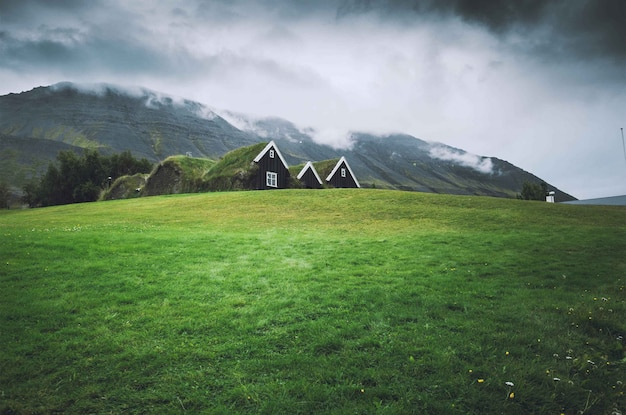 Small houses in a green field with dark sky Free Photo