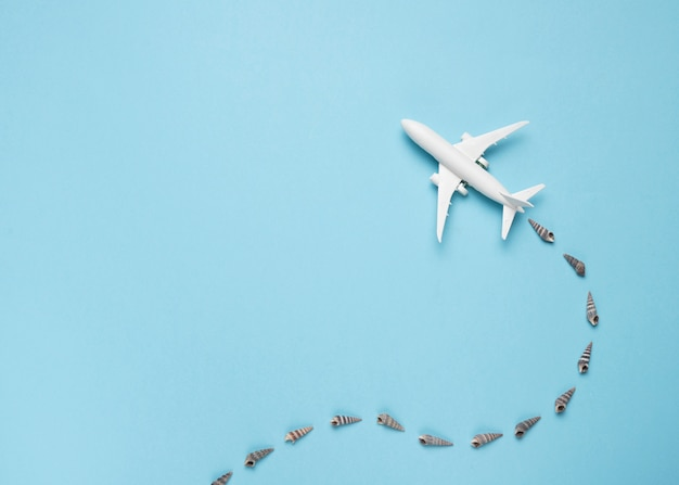 Small plane with trace of seashells Free Photo