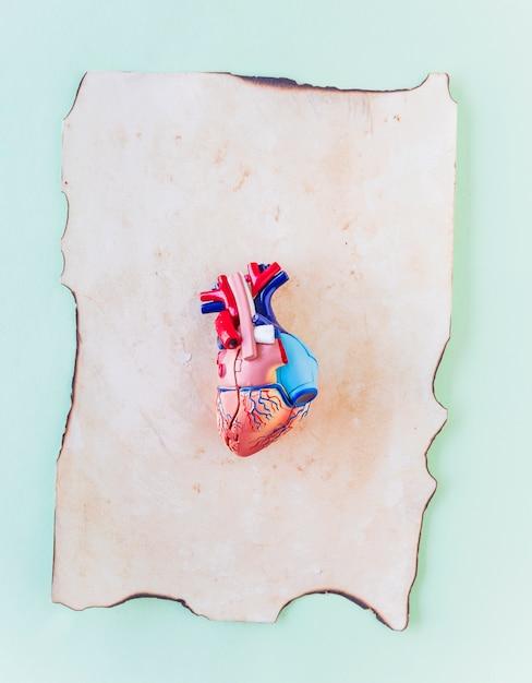 Piccolo cuore umano in plastica su carta vecchia Foto Gratuite