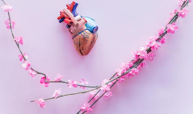 Piccolo cuore umano in plastica con fiori sul tavolo Foto Gratuite