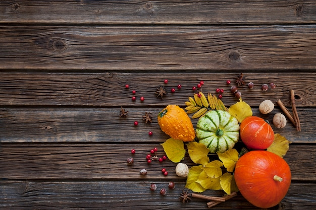 Small pumpkins, nuts, apples and berries of mountain ash with autumn leaves Premium Photo