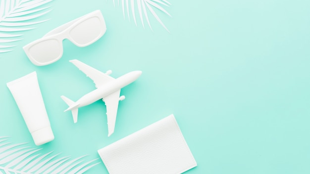 Small toy plane with sunglasses and palm leaves Free Photo