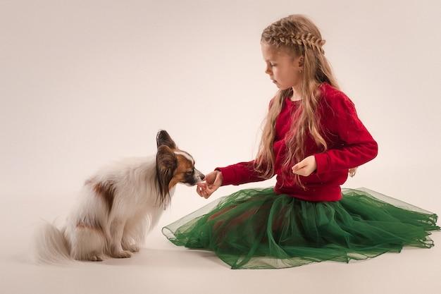 Маленький зевая щенок папийона Бесплатные Фотографии