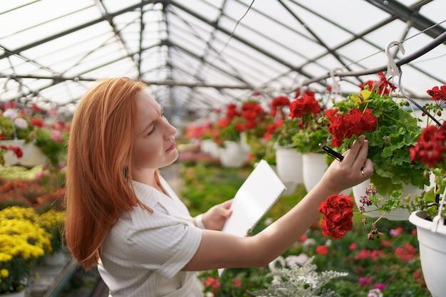 Умный контроль теплицы. работница осматривает красные цветы и отмечает данные при дневном свете Бесплатные Фотографии