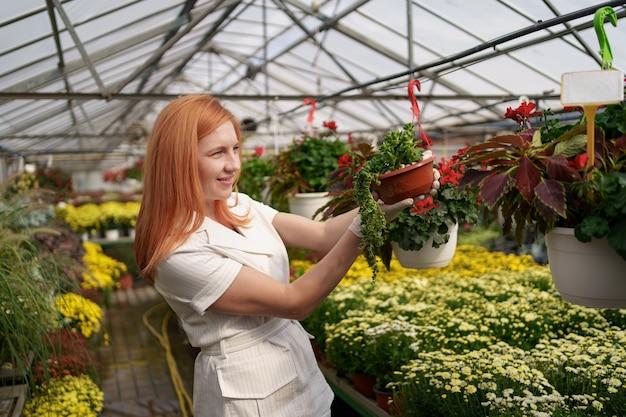 彼女は温室の庭の植物に傾向があるように鉢植えの花を検査している彼女の保育園で笑顔の花屋 無料写真