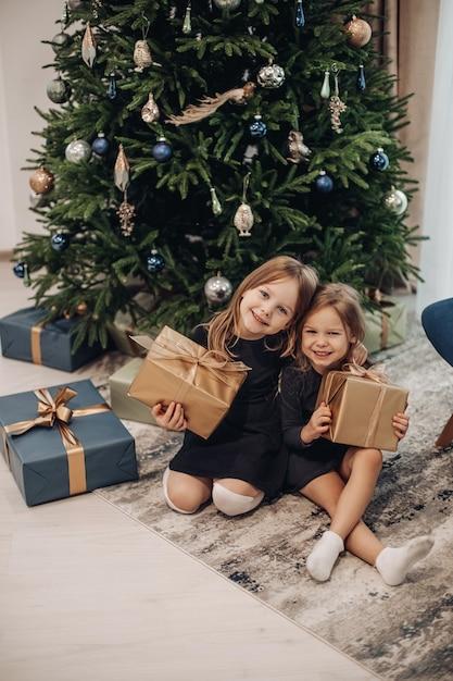 갈색 포장 선물에 그들의 크리스마스 선물을 들고 웃는 소녀 무료 사진