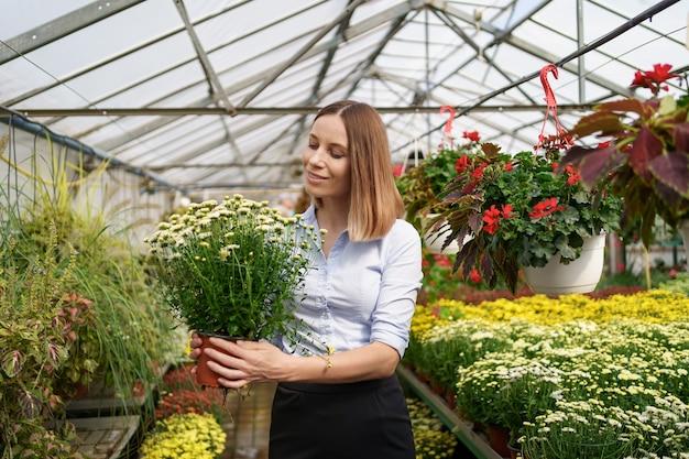 彼女は温室の園芸植物に傾向があるように彼女の手で鉢植えの菊を持って立っている彼女の保育園で幸せな花屋を笑顔 無料写真