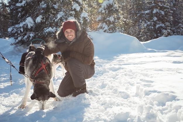 Musher sorridente che lega i cani husky alla slitta Foto Gratuite