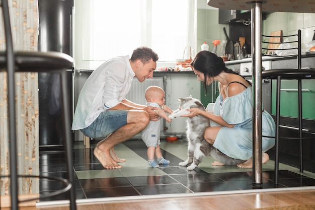 Smiling parent playing with cat and their baby in the kitchen Free Photo