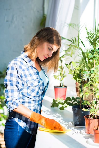 Smiling young woman cleaning the surface near the potted plant in sunlight Free Photo