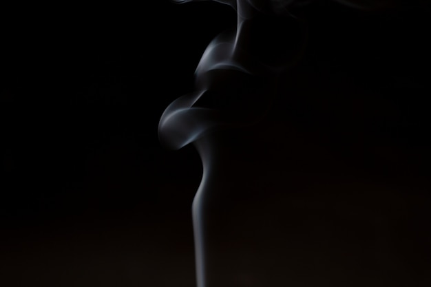 Smoke from aromatherapy incense sticks with the smell of sandalwood and essential oil in chinese medicine. Premium Photo