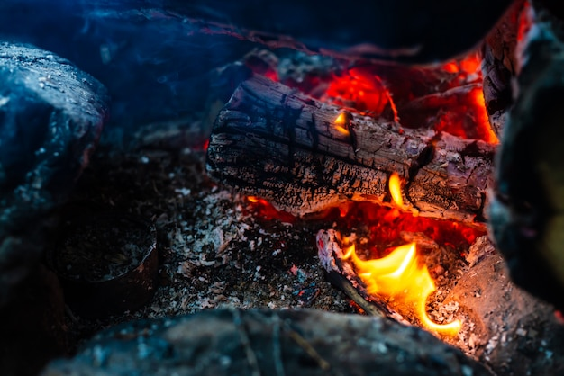 Smoldered logs burned in vivid fire. Premium Photo