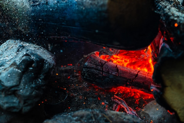 Smoldered logs burned in vivid fire. Premium Photo