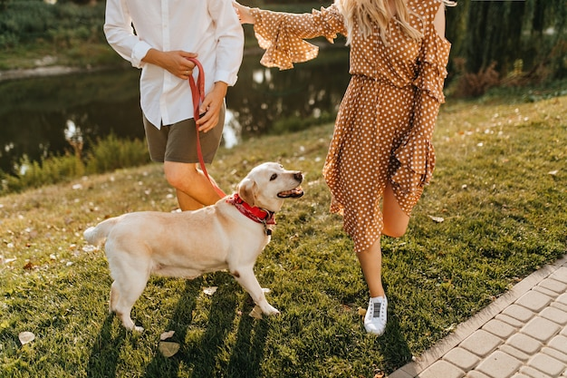 Snapshot of labrador in red collar rejoicing in walk in park with his master and mistress. Free Photo