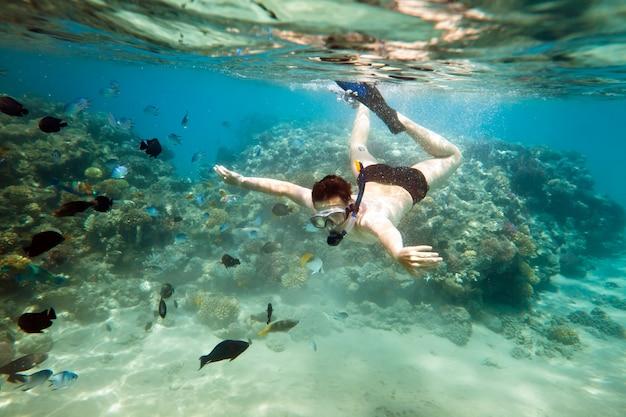 Snorkeler diving along the brain coral Premium Photo