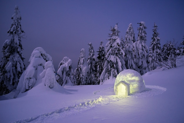 Snow igloo in the winter mountain forest Premium Photo