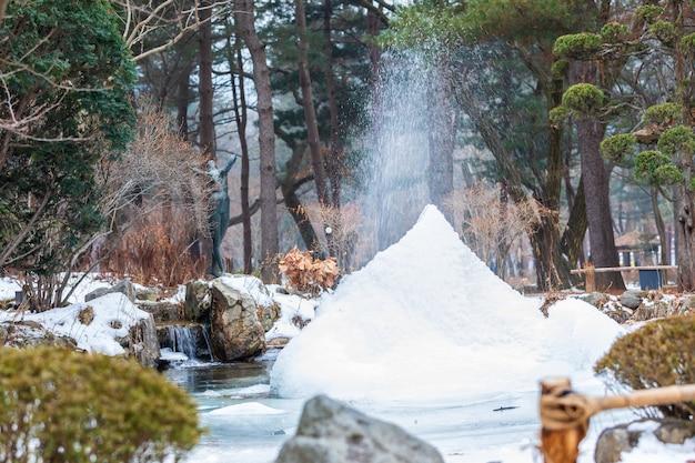 Снежный сезон на острове острова парк корея Premium Фотографии
