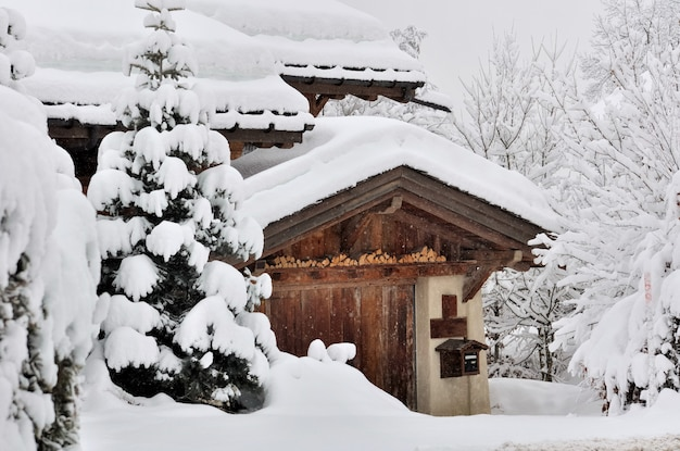 Snowfall in a village Premium Photo