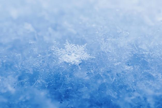 Снежинки крупным планом. макро фото. понятие зима, холод. скопируйте пространство. Premium Фотографии