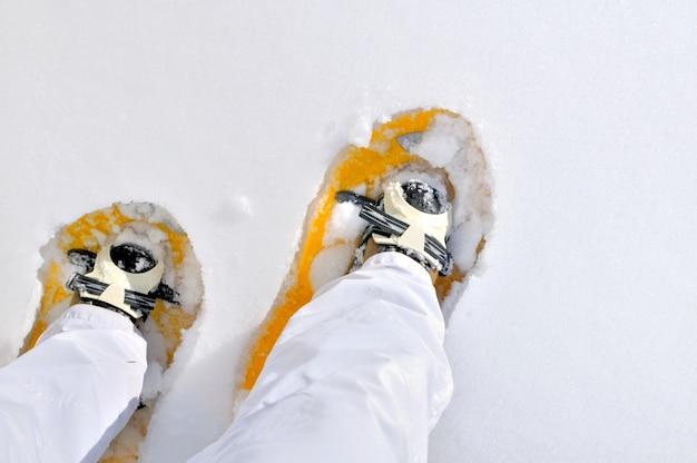 Snowshoeing in winter Premium Photo