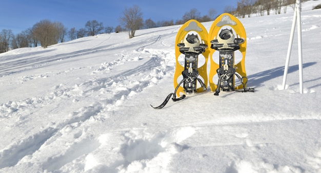 Snowshoes and sticks on the snow Premium Photo