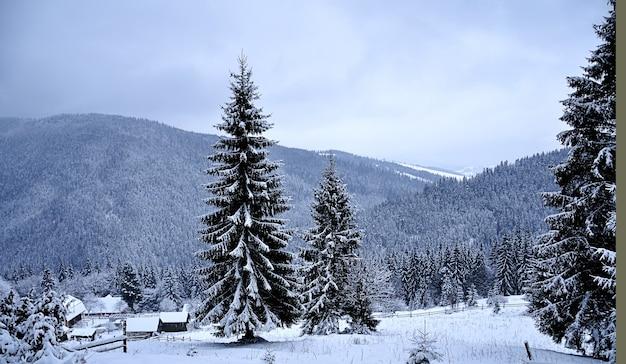 房と山々のある雪景色 Premium写真