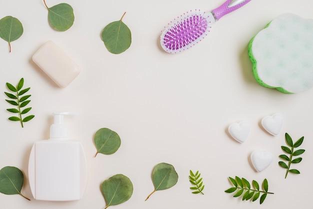 Soap; hairbrush; dispenser bottle and green leaves on white backdrop Free Photo