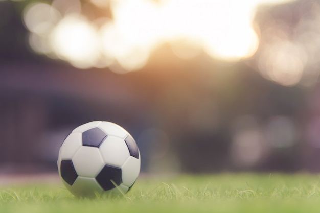 Soccer ball on grass green field with copy space Premium Photo