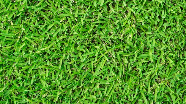 green grass soccer field. Soccer Field Green Grass Background Texture Premium Photo