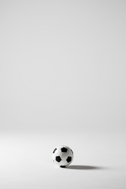 Soccer football ball black and white isolated on white Free Photo