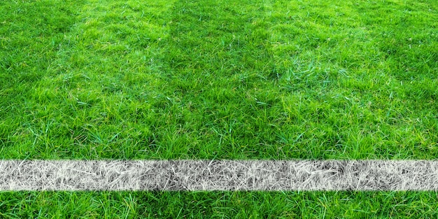 Soccer line in green grass of soccer field. green lawn field background. Premium Photo